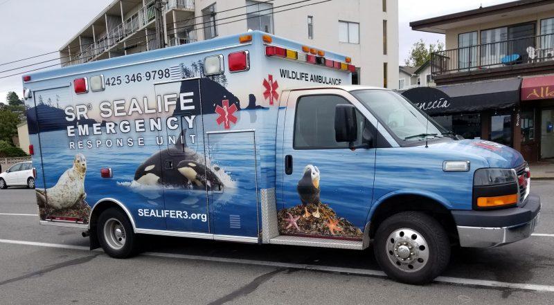 SR3 Ambulance